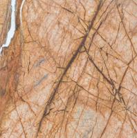 Płytki Marmurowe Rain Forest Gold
